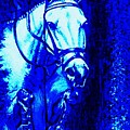 Horse Painting Jumper No Faults Blue by Bets Klieger