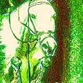 Horse Painting Jumper No Faults Green With Reds by Bets Klieger