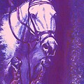 Horse Painting Jumper No Faults Lavender by Bets Klieger