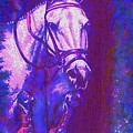 Horse Painting Jumper No Faults Purple And Blue by Bets Klieger
