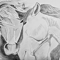 Horse Pair by Anirudh Maheshwari