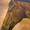 horse portraint PRINCETON pastel colors by Bets Klieger