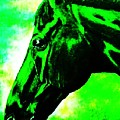 horse portrait PRINCETON green and black by Bets Klieger