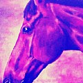 horse portrait PRINCETON pink by Bets Klieger