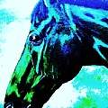 horse portrait PRINCETON really blue by Bets Klieger