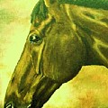 horse portrait PRINCETON soft colors by Bets Klieger