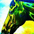 horse portrait PRINCETON vibrant yellow and blue by Bets Klieger