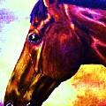 horse portrait PRINCETON wow purples by Bets Klieger