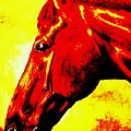 horse portrait PRINCETON yellow and red by Bets Klieger