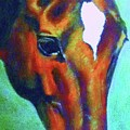 horse portrait RED psychedelic by Bets Klieger