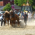 Horse Pull 2009 by Melissa Parks