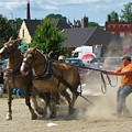 Horse Pull 3 by Melissa Parks