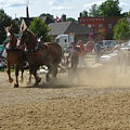 Horse Pulling by Melissa Parks