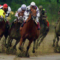 Horse Race by Barry Blackman