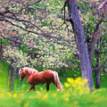 Horse Running In Spring Woods by Vicki France