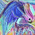 Horse by Sana Wasi