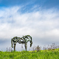 Horse Sculpture In The Pasture by Robin Zygelman