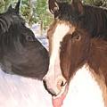 Horse Whisperer by Michael Lee
