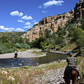 Horseback In The Gila Wilderness by Lon Dittrick
