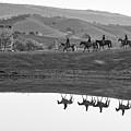 Horseback Landscape by Ana V Ramirez