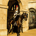Horseguard by Nigel Dudson