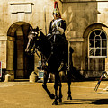 Horseguards. by Nigel Dudson