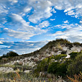 Horseneck Beach Ma. 2 by Troy DeTerra