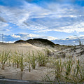 Horseneck Beach Ma. 3 by Troy DeTerra