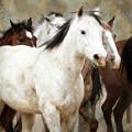 Horses-01 by Susan Kordish