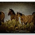 Horses 34 by Ingrid Smith-Johnsen