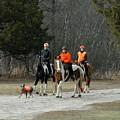 Horses 6 by Joyce StJames