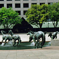 Horses At William Square  by Ruth  Housley