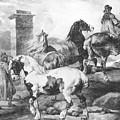 Horses by Gericault Theodore