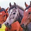 Horses - Id 16217-202746-6154 by S Lurk