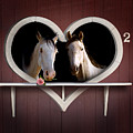 Horses In Stable by Gravityx9  Designs