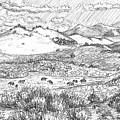 Horses On Summer Range Field Sketch by Dawn Senior-Trask