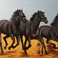 Horses by Roman Zaric