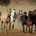 Horses Running Free by Heather Swan
