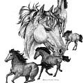 Horses by Sherry Shipley