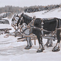 Horses Wearing Snowshoes Historical Vignette by Dawn Senior-Trask