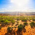 Horseshoe Bend Desert by Benny Marty