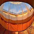 Hot Air Ballon 5 by Felicia Tica