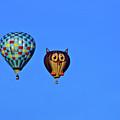 Hot Air Balloons by Bill Barber