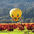 Hot Air In The Valley by Gail Salituri