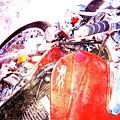 Hot Red by Susanne Van Hulst