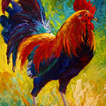Hot Shot - Rooster by Marion Rose
