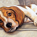 Hound Dog by Glenda Stevens