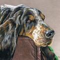 Hound Dog by Sarah Batalka