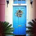 House Door 6 In Charleston Sc  by Susanne Van Hulst