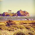 House On An Island by Jill Battaglia
